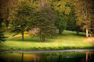park_fall_autumn_outdoors_season_foliage_beautiful_landscape-939380